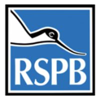 RSPB-oxkx9s4sy2r7yf63u4ehb1mxnfwyy3zkc95a5bf8fa